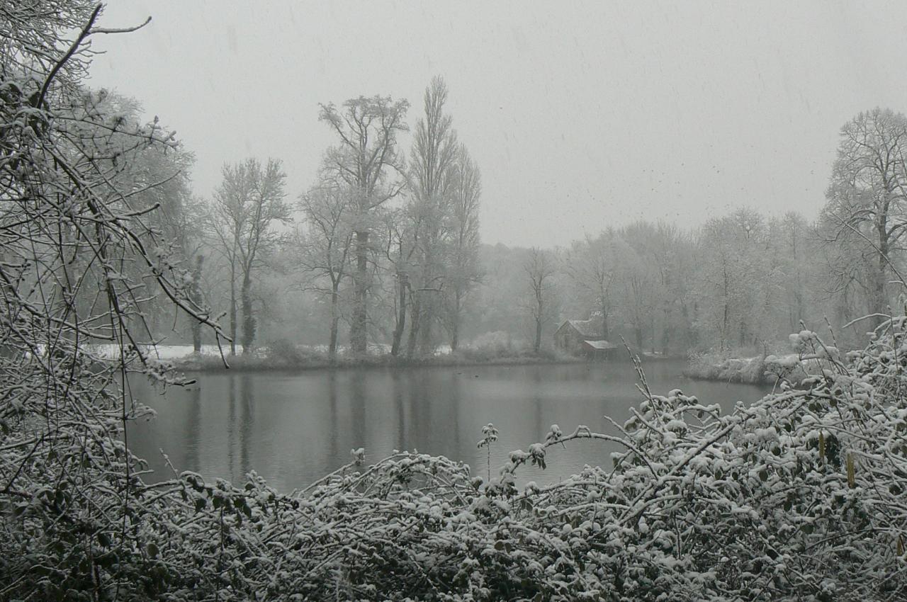 11 L'étang du château (1)