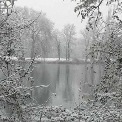 12 L'étang du château (2)